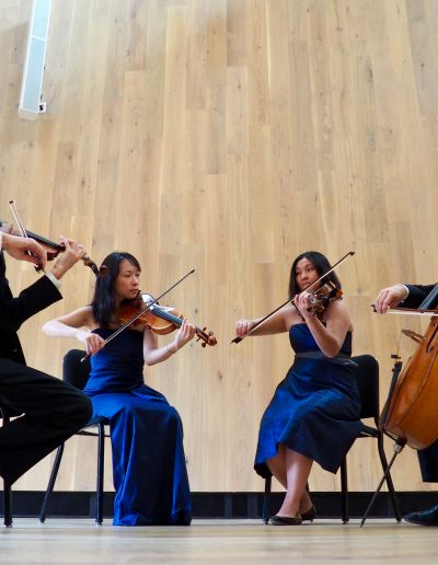 The Delgani String Quartet